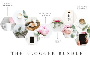 The blogger bundle by Twigy posts