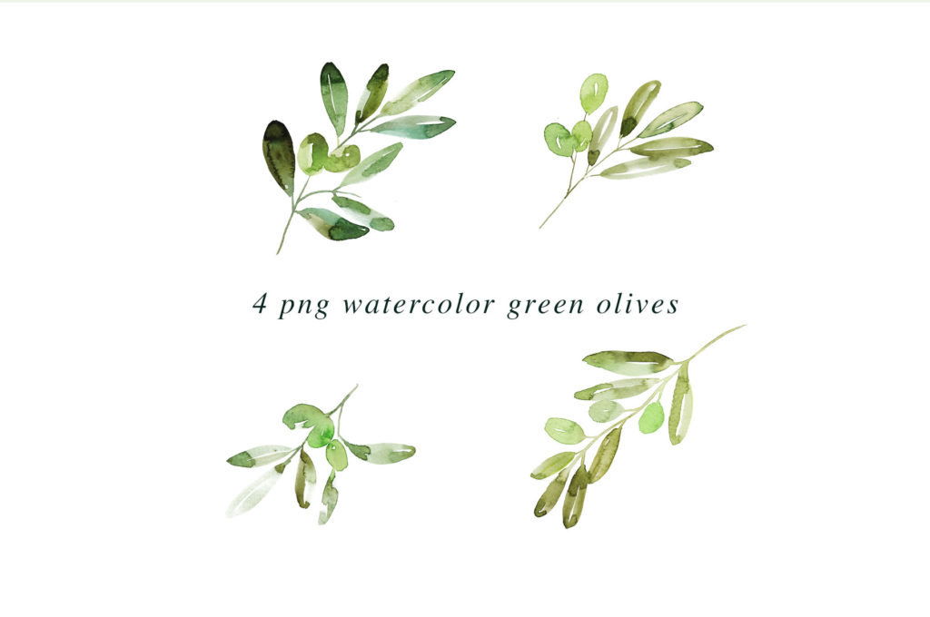4-olive-watercolor-2