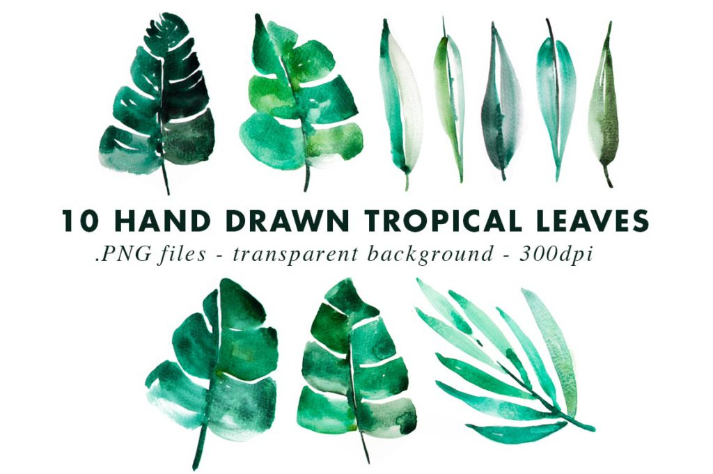 TROPICAL-LEAVES-BYHEARTMADE-2